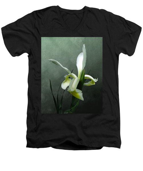 Iris Celebration Men's V-Neck T-Shirt by I\'ina Van Lawick