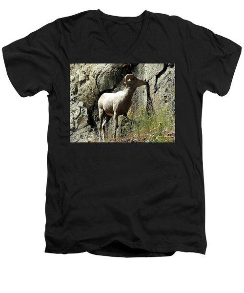Irish Ram Men's V-Neck T-Shirt