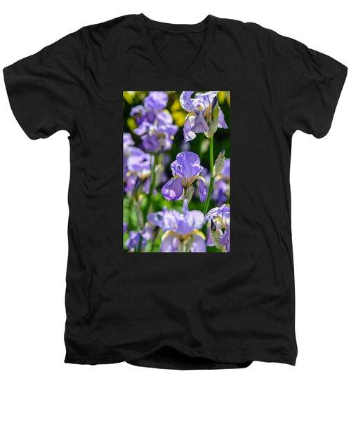 Irisses Men's V-Neck T-Shirt by Rainer Kersten