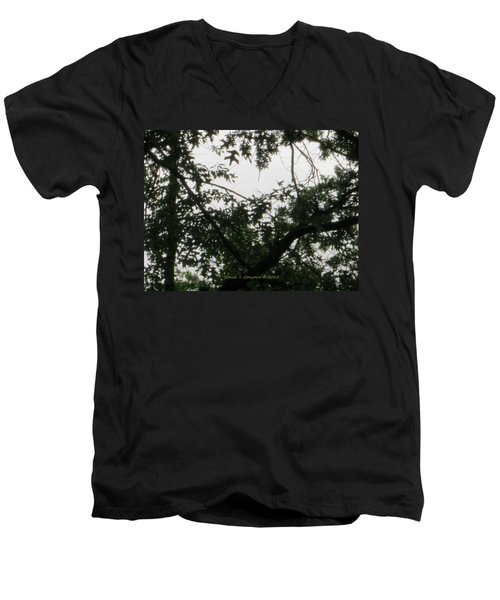 Is This My Heart? Men's V-Neck T-Shirt by Sonali Gangane