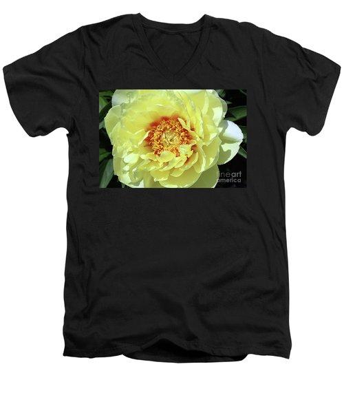 Itoch Peony  Men's V-Neck T-Shirt