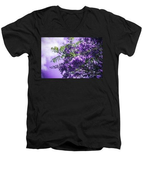 Men's V-Neck T-Shirt featuring the photograph Jacaranda Mimosifolia Kula Maui Hawaii by Sharon Mau