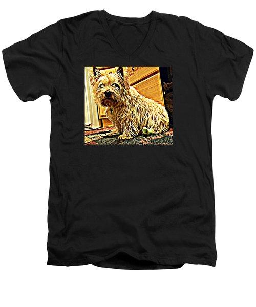 Jake The Dog Men's V-Neck T-Shirt