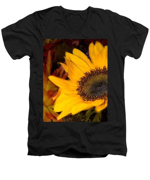 Jeweled Men's V-Neck T-Shirt