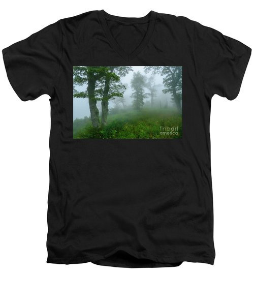 Men's V-Neck T-Shirt featuring the photograph Jewell Hollow Overlook by Thomas R Fletcher