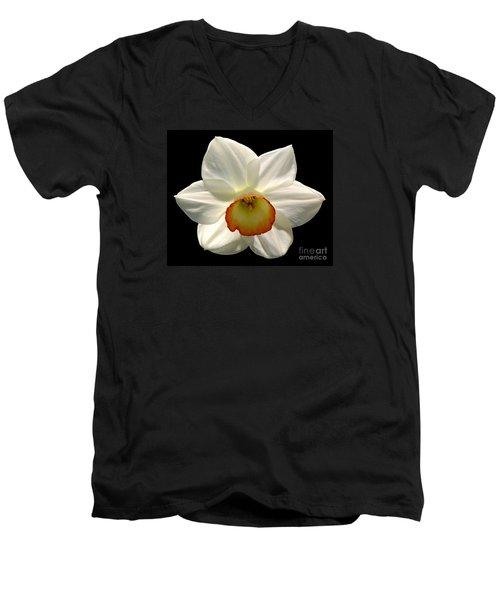 Jonquil 1 Men's V-Neck T-Shirt by Rose Santuci-Sofranko