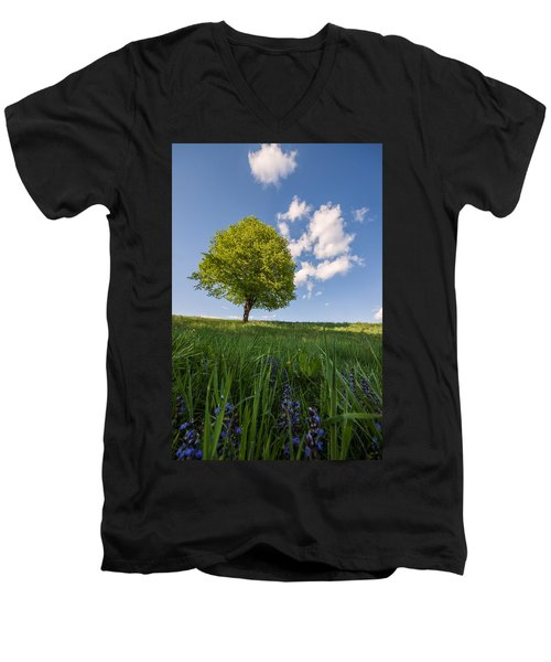 Men's V-Neck T-Shirt featuring the photograph Joy by Davorin Mance