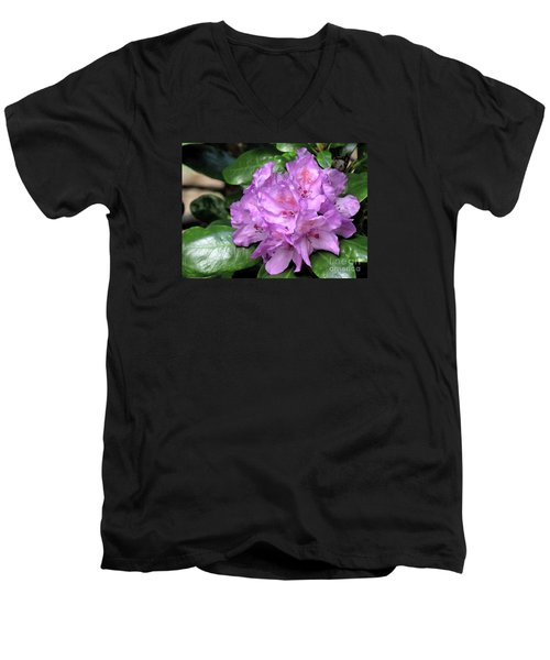 June Daphnoides Men's V-Neck T-Shirt by Chris Anderson