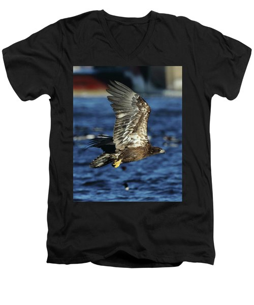 Men's V-Neck T-Shirt featuring the photograph Juvenile Bald Eagle Over Water by Coby Cooper