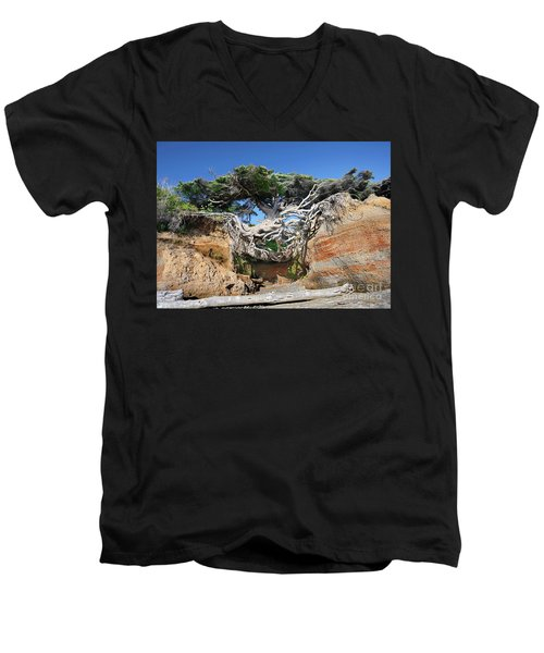 Kalaloch Tree Of Life Men's V-Neck T-Shirt