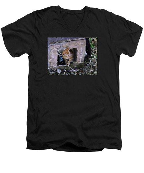 Kitten In The Junk Yard Men's V-Neck T-Shirt by Larry Capra