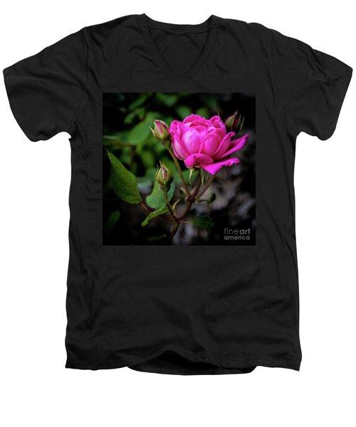 Knockout Rose Men's V-Neck T-Shirt