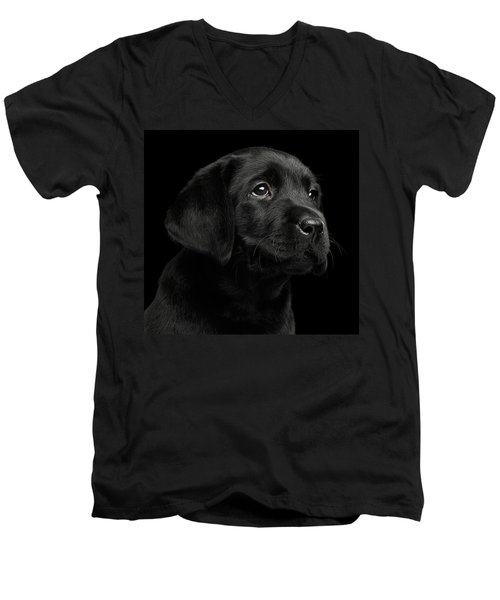Men's V-Neck T-Shirt featuring the photograph Labrador Retriever Puppy Isolated On Black Background by Sergey Taran