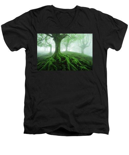 Land Of Roots Men's V-Neck T-Shirt