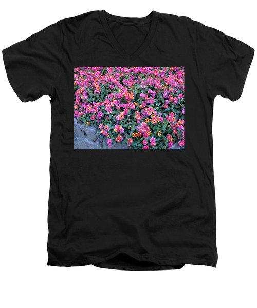 Lantana Men's V-Neck T-Shirt by Betty Buller Whitehead