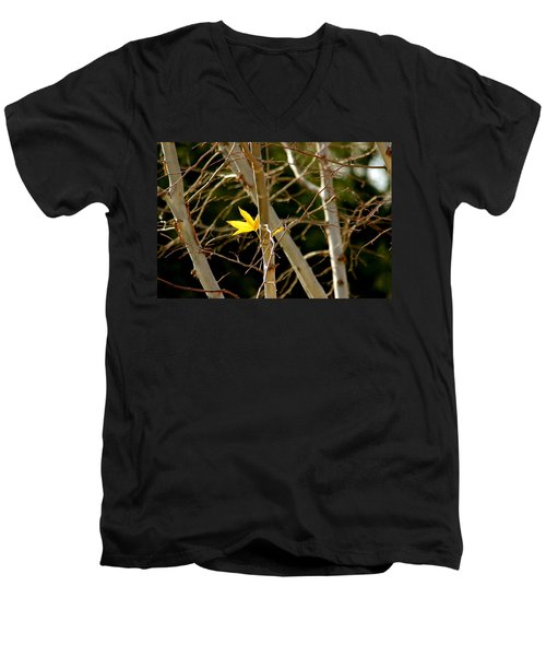Men's V-Neck T-Shirt featuring the photograph Last Leaf by Kume Bryant