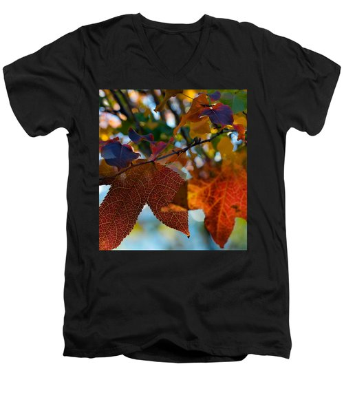 Late Autumn Colors Men's V-Neck T-Shirt