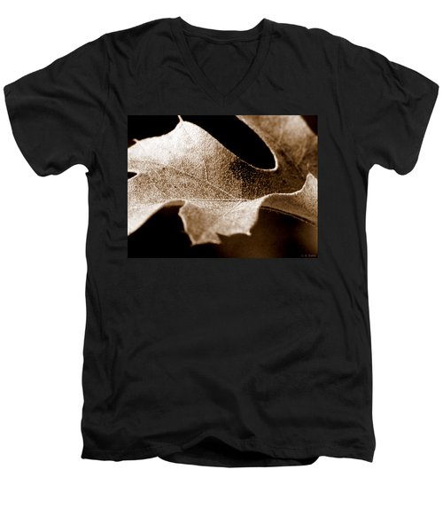 Leaf Study In Sepia Men's V-Neck T-Shirt by Lauren Radke