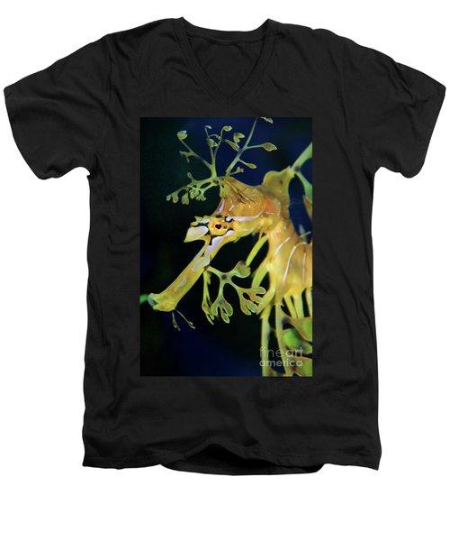 Leafy Sea Dragon Men's V-Neck T-Shirt by Mariola Bitner