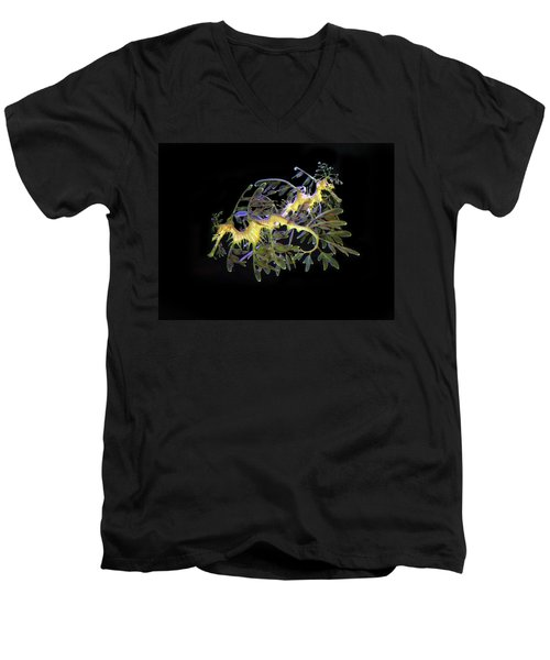 Leafy Sea Dragons Men's V-Neck T-Shirt