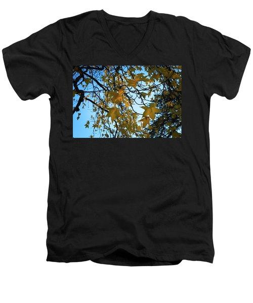 Leaves Men's V-Neck T-Shirt by Cendrine Marrouat