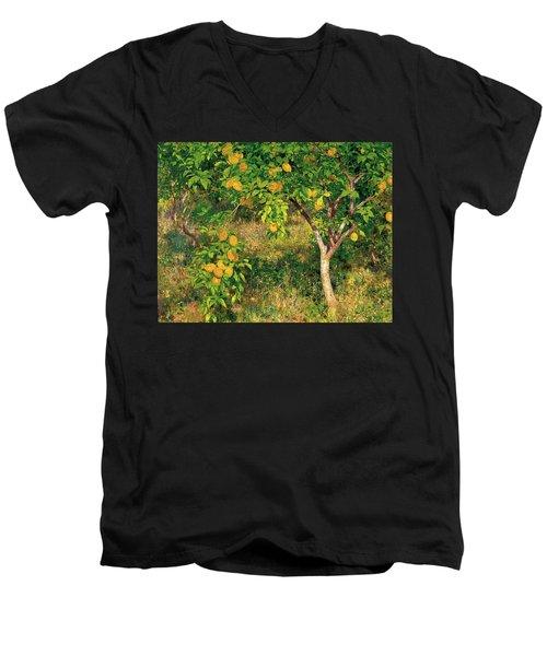 Men's V-Neck T-Shirt featuring the painting Lemon Tree by Henry Scott Tuke