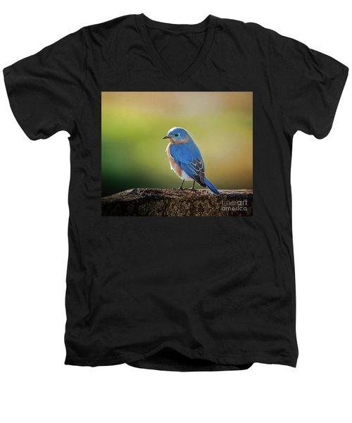 Lenore's Bluebird Men's V-Neck T-Shirt by Robert Frederick