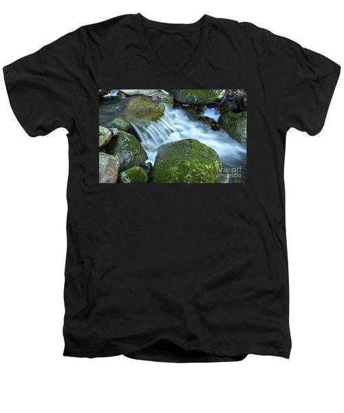 Life Men's V-Neck T-Shirt by Alana Ranney
