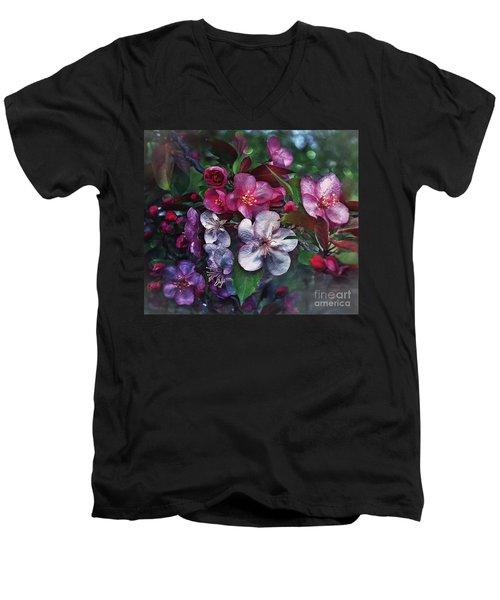 Life Balance Men's V-Neck T-Shirt
