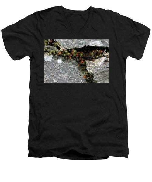 Life Lived In The Cracks Men's V-Neck T-Shirt