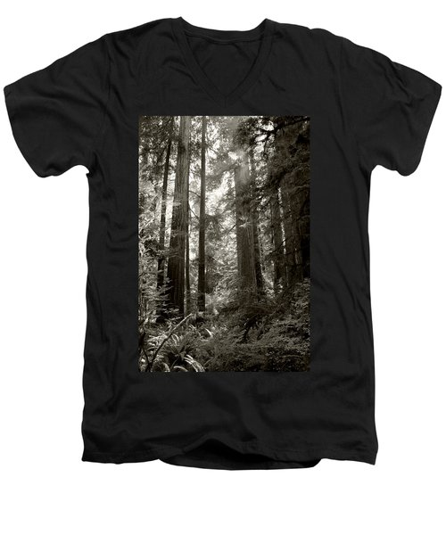 Light Through Redwoods Men's V-Neck T-Shirt
