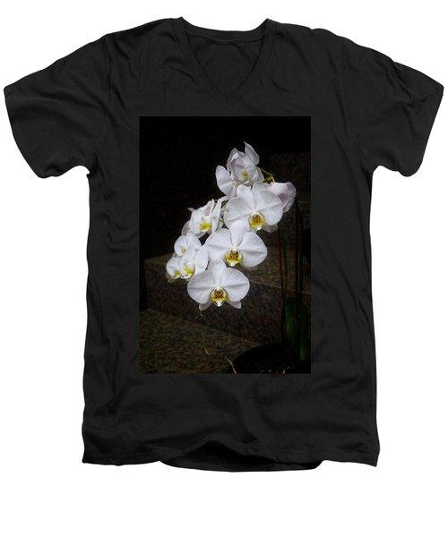 Like A Dove Men's V-Neck T-Shirt