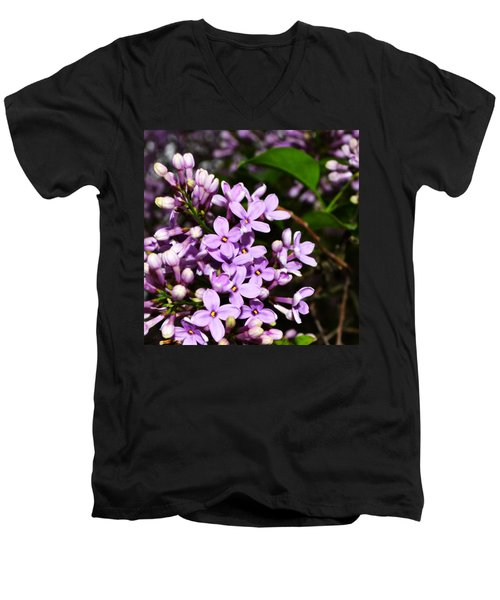 Lilac Bush In Spring Men's V-Neck T-Shirt