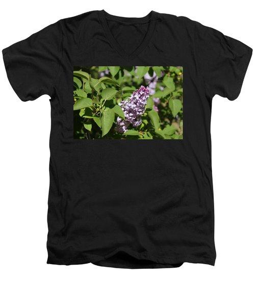 Lilacs 5551 Men's V-Neck T-Shirt