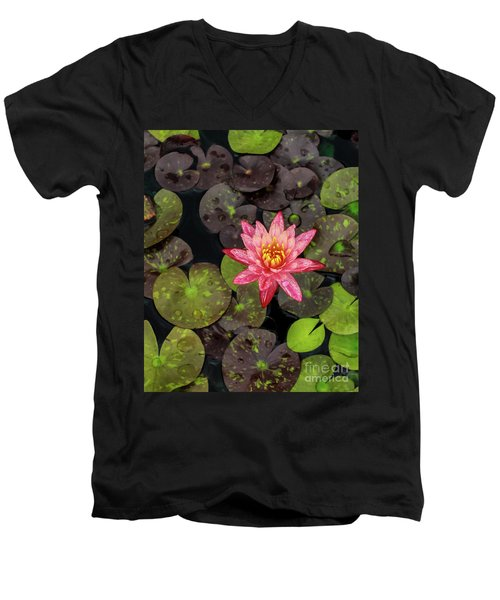Lilly Pad, Red Lilly Men's V-Neck T-Shirt
