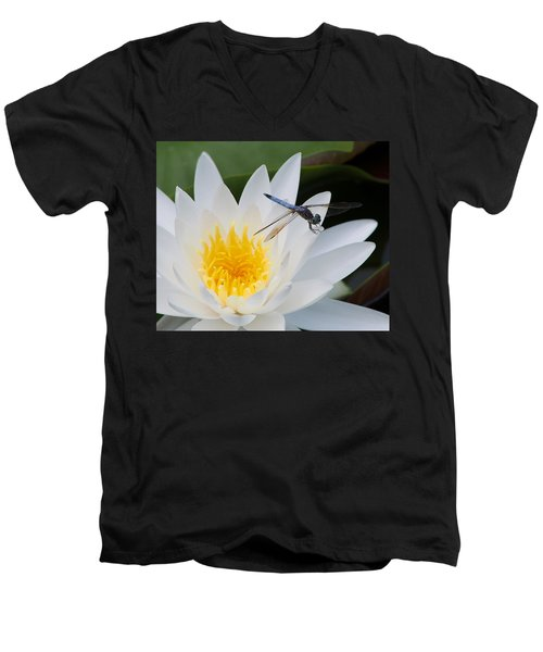 Lily And Dragonfly Men's V-Neck T-Shirt