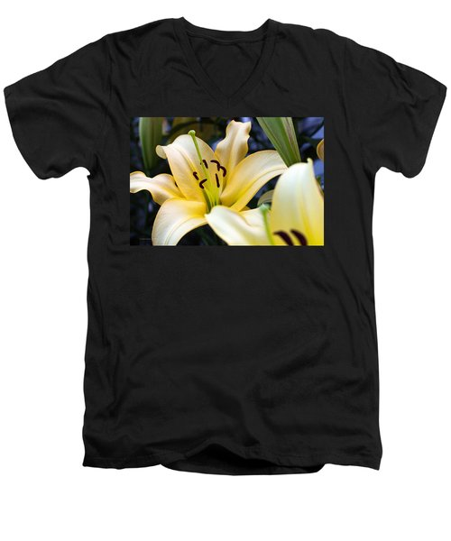 Lily Splendor Men's V-Neck T-Shirt