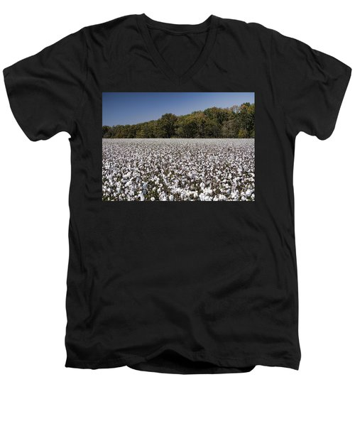 Limestone County Alabama Cotton Crop Men's V-Neck T-Shirt by Kathy Clark
