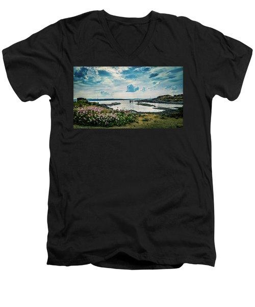 Lindoya Men's V-Neck T-Shirt