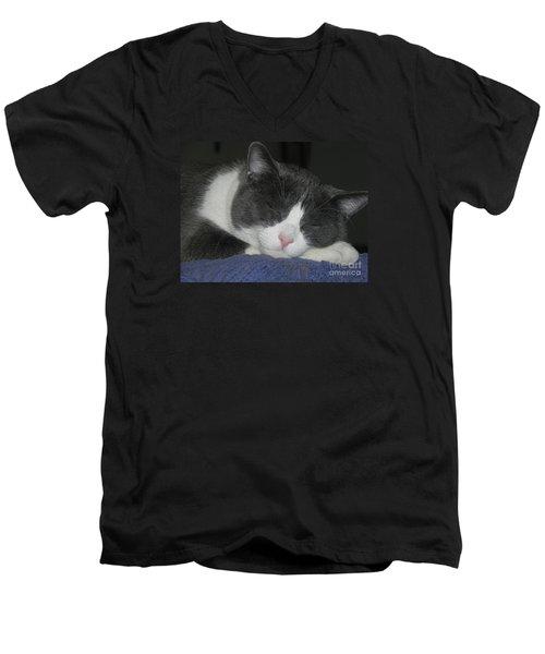 Lion King Men's V-Neck T-Shirt by Chrisann Ellis