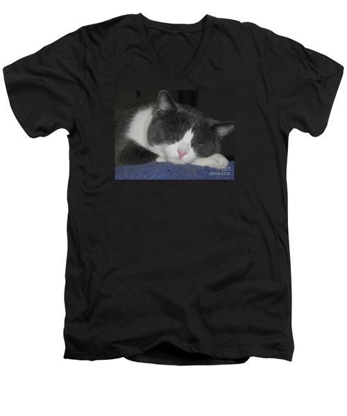 Lion King Men's V-Neck T-Shirt
