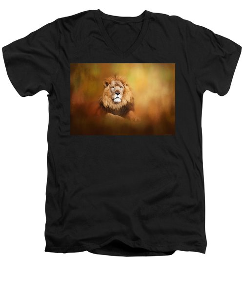 Lion - Pride Of Africa I - Tribute To Cecil Men's V-Neck T-Shirt