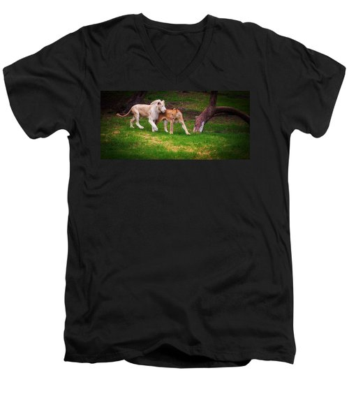 Men's V-Neck T-Shirt featuring the photograph Lions Love by Jenny Rainbow