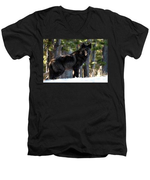 Little Blackie Men's V-Neck T-Shirt