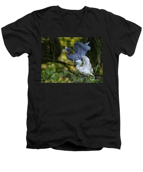 Men's V-Neck T-Shirt featuring the photograph Little Blue Adult And Juvenile by Myrna Bradshaw