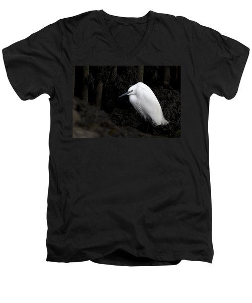 Little Egret Men's V-Neck T-Shirt