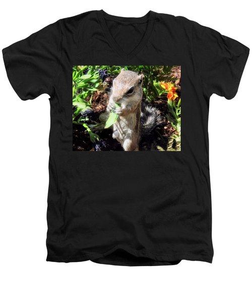 Little Nibbler Men's V-Neck T-Shirt