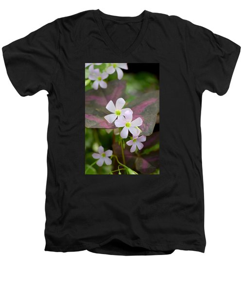 Little Twinkles Men's V-Neck T-Shirt by Deborah  Crew-Johnson