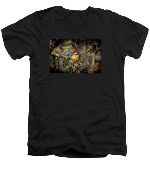 Little Wren 1 Men's V-Neck T-Shirt