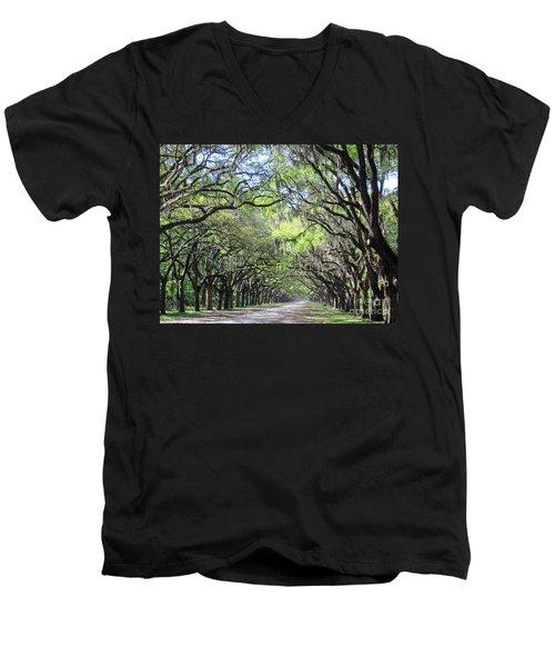 Live Oak Canopy Men's V-Neck T-Shirt